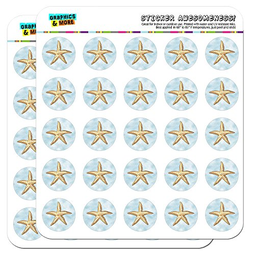 Starfish Ocean Sea Creature Beach 1' Planner Calendar Scrapbooking Crafting Stickers - Opaque