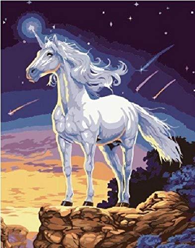 WAZHCY su Tela Disegni da Colorare per Numeri Kit Unicorno Fai da Te per Bambino Adulto