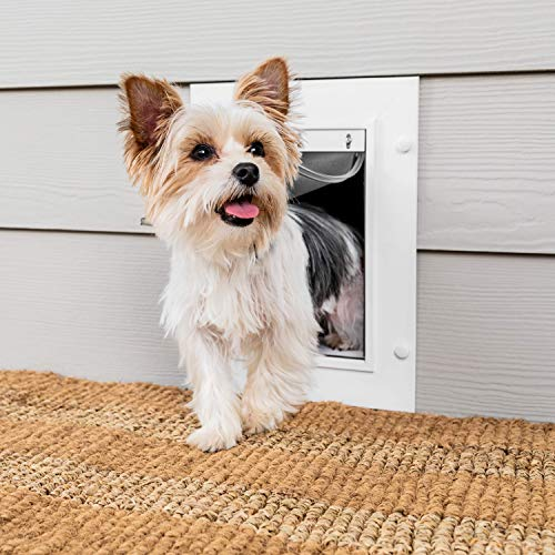 PetSafe Wall Entry Pet Door with Telescoping Tunnel, Small, for Pets Up to 15 Lb., White, Made in the USA