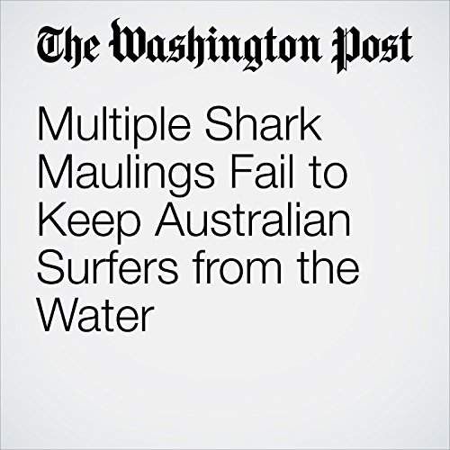 Multiple Shark Maulings Fail to Keep Australian Surfers from the Water copertina