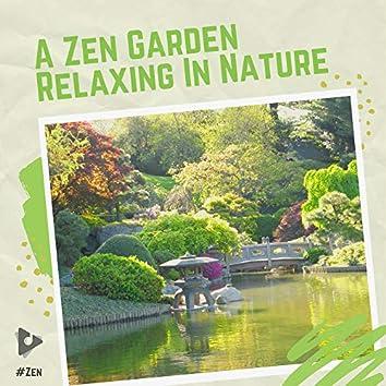 A Zen Garden Relaxing In Nature