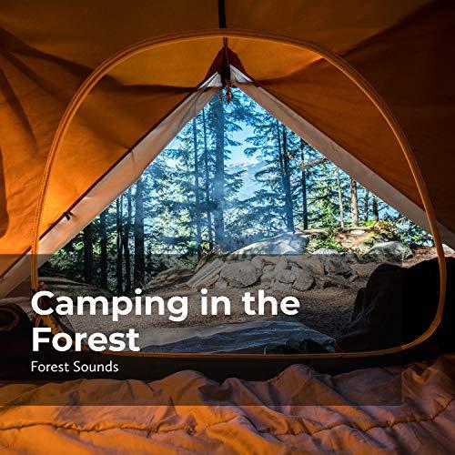 Jungle Tent Camping