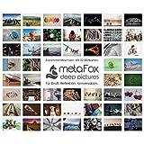 metaFox - ZUSAMMEN WACHSEN - Postkarten-Set der besonderen Art für
