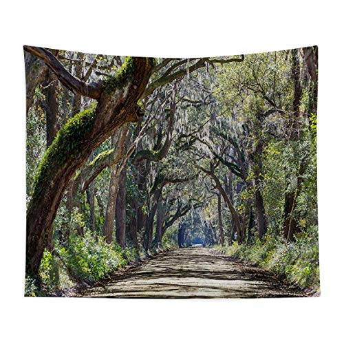 Mozenou Natural Landscape Tapestry Wall Mounted - Road in The Forest with Trees Botany South Carolina National Park Eco Picture - Bedroom, Family Dormitory, Fun Gifts,59x83 Inch