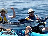Extreme Marlin- Kayak Style in the Sea of Cortez