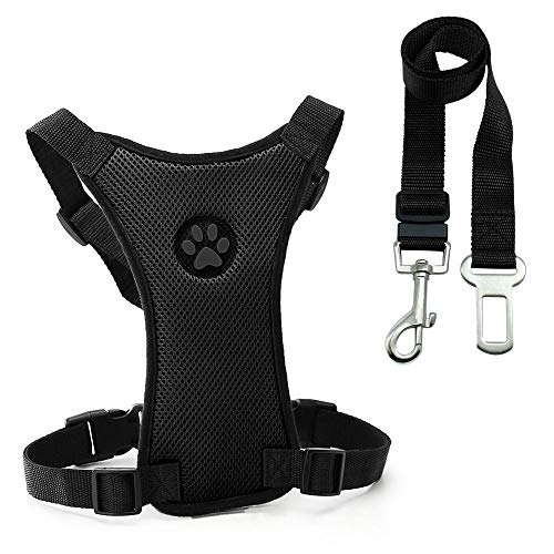 heiyun Heavy Duty Adjustable Pet Puppy Dog Safety Harness with Leash Lead Set Breathable Padded Dog Leash Collar Chest Harness Vest(M,Black)