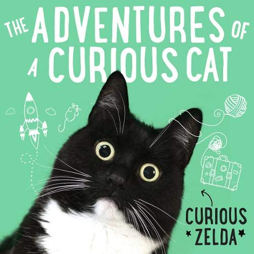 The Adventures of a Curious Cat cover art