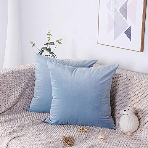 Artscope Pack of 2, Soft Velvet Decorative Cushion Covers for Couch Sofa Bed, 45cm x 45cm Square Solid Color Throw Pillow Covers Pillowcases with Invisible Zipper (Light Blue)