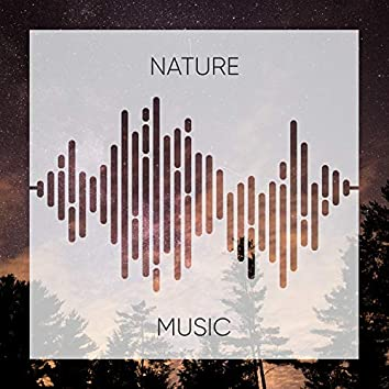 Spiritual Rustic Nature Music