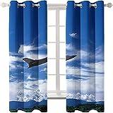 LWXBJX Cortinas Térmica Aislante Cortinas Opacas - Azul cielo avión montañas - Impresión 3D Aislantes de Frío y Calor 90% Opacas Cortinas - 300 x 270 cm - Salon Cocina Habitacion Niño Moderna Decorati