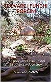 Trovare i funghi porcini: Come prevedere l'uscita dei funghi porcini e dove trovarli
