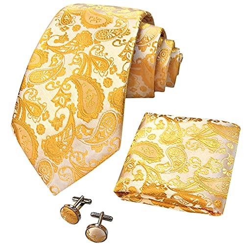 CANGRON Fazzoletto da taschino da uomo, cravatta con motivo cachemire oro pallido, tessuto da uomo, cravatta set DLSPXJI