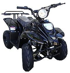 ATA-110B1 TaoTao Kids Gas 110cc Sport ATV -