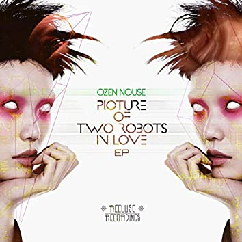 Picture of Two Robots In Love