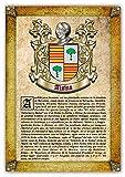 Historia y Origen del Apellido Alsina | Lámina Impresa en Alta resolución + Certificado de Garantía + Plantilla Árbol Familiar de 6 Generaciones