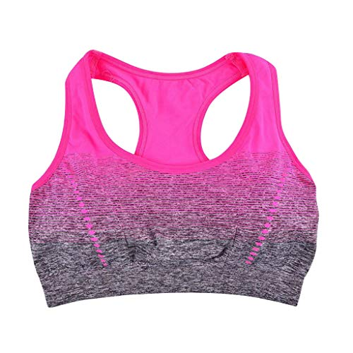 Female Gradual Color Shock-Proof Yoga Sports Bra Without Steel Ring Underwear