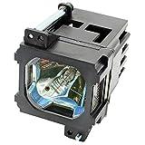 Rich Lighting BHL-5009-S ランプ JVC BHL-5009-S DLA-HD1 プロジェクター 交換用 ランプ【180日保証】