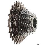 Campagnolo Record 10V–Cassette pour vélo