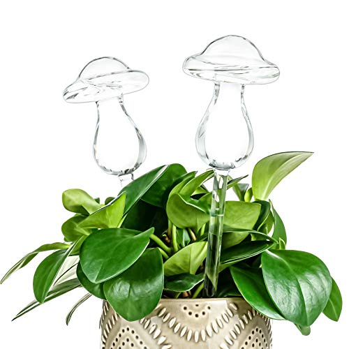 Kingbuy 4 Pack Plant Waterer Self Watering Globes,Watering cans for House Plants,Mushroom Shape Hand Blown Transparent Mini Durable Clear Glass Aqua Bulbs