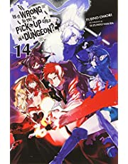 IS WRONG PICK UP GIRLS DUNGEON NOVEL 14