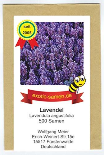 Lavendel - Bienenweide - Lavendula angustifolia - 500 Samen