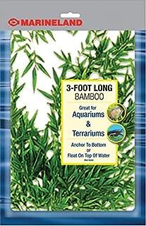 Best marineland bamboo for aquariums Reviews