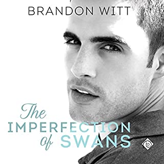 The Imperfection of Swans audiobook cover art