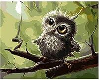 数字油絵 フレーム付き、数字キット塗り絵 手塗り DIY-大人の初心者の子供-コキンメフクロウ-40x50 cm