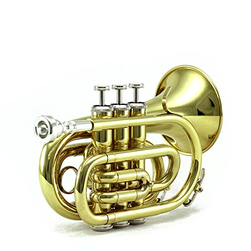 FINAL SALE! 10% OFF Sky Band Approved Brass Bb Pocket Trumpet with Case, Cloth, Gloves and Valve Oil, Guarantee Top Quality Sound, Gold