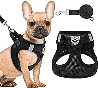 Puppy Harness and Leash Set - Soft Mesh Dog Vest Harness, Reflective & Adjustable Harness for Small to Medium Dogs, Cats a...