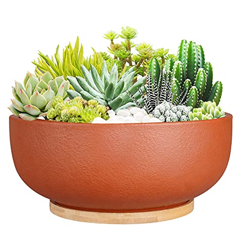 SQOWL 10 Inch Large Terracotta Planter Pot,Clay Succulent Bonsai Planter with Drainage Hole and Bamboo Saucer for Indoor Plants
