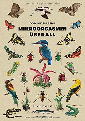 Mikroorgasmen überall: Von der Raffinesse und Mannigfaltigkeit der Natur vor unserer Haustür