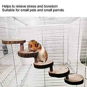 Petit Hamster Échelle 5 Couches Perroquet Jouet Escalade Escaliers en Bois Échelle pour Animaux De Compagnie Jouets pour Perchoirs Cage Cadeau pour Petits Animaux