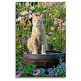 CALVENDO Premium Textil-Leinwand 80 x 120 cm Hoch-Format Rote Katze auf Holzfass im blühenden Garten, Leinwanddruck von Katho Menden
