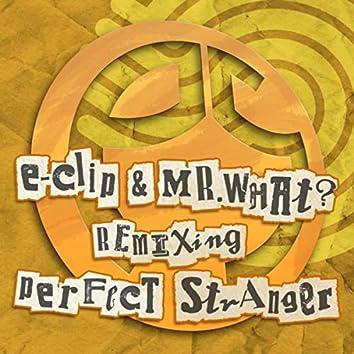 Perfect Stranger (Remixes)