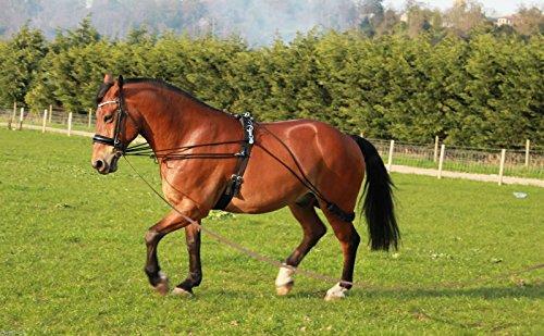 Nieuw paard longeren training hulp één maat past voor iedereen op verkoop (bruin)