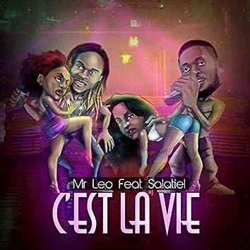 C'est la vie (feat. Salatiel)