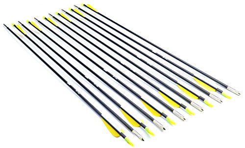 ANTSIR 28 Fiberglass Archery Target Arrows-Practice Arrows for Kids Youth or Beginners on Recurve Bow Traditional Bow Long Bow(Yellow Vanes Pack of 12)