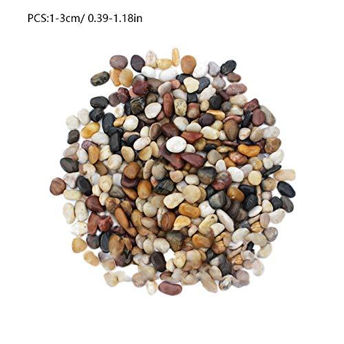 Yunt Acuario Gravel River Rock, Grava Decorativa Pulida Natural, guijarros Decorativos pequeños, Piedras de Colores Mezclados para acuarios, paisajismo, Rellenos de floreros