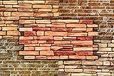 3D Wandpaneele Restposten! - große Auswahl von stabilen und pflegeleichten PVC Platten - zur Wandverkleidung z. B. als Küchenrückwand - 1 Platte (OLD BRICK BROWN)