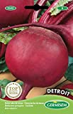 Germisem Detroit Semi di Barbabietola 5 g