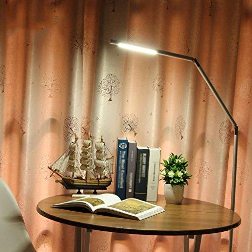 JIAWYJ DONGYANG-Lámparas- * Lámpara de Piso de la Sala de Estar Moderna, Estudio de la Cama de Dormitorio Lea la protección Ocular (Edición: Estilo de Carga) (Size : Charging Style)
