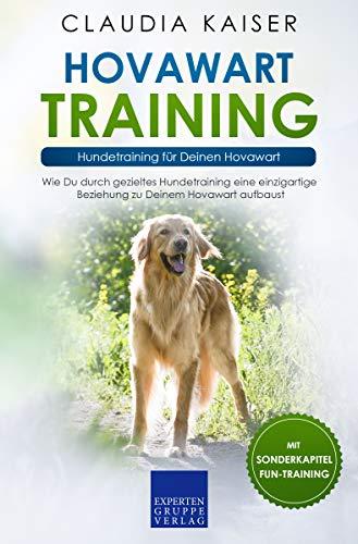 Hovawart Training: Hundetraining für Deinen Hovawart