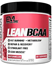 Evlution Nutrition LeanBCAA, BCAA's, CLA and L-Carnitine, Stimulant-Free, Recover and Burn Fat, Sugar and Gluten Free, 30 Servings
