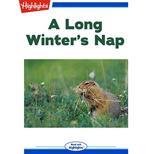 A Long Winter's Nap copertina