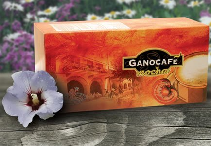 Ganocafe Mocha by Gano Excel USA Inc - 15 Packets by Gano Excel USA Inc.