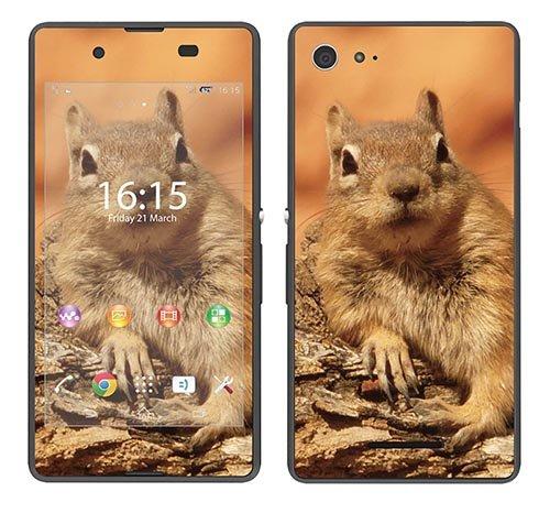 Royal Wandtattoo RS. 98918selbstklebend für Sony Xperia E3mit Motiv Eichhörnchen auf AST