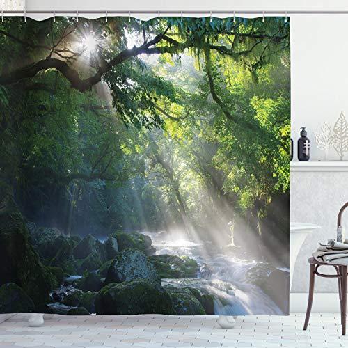 ABAKUHAUS Natur Duschvorhang, Dschungel Sonnenlicht Bäume, mit 12 Ringe Set Wasserdicht Stielvoll Modern Farbfest & Schimmel Resistent, 175x240 cm, Weiß Grün