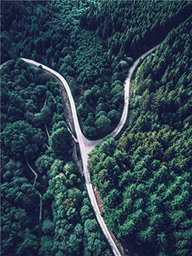 LDTSWES Houten natuur Boslandschap Legpuzzels, puzzel van 1000 stukjes, voor volwassenen Kinderspellen Assembleren van puzzels-snelweg
