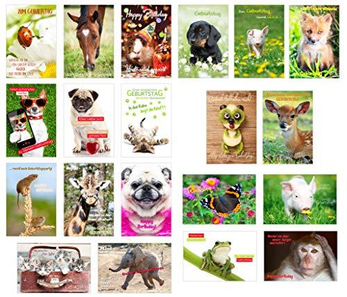 Set 20 exklusive Premium Geburtstagskarten mit Umschlag (Tiere Hund Katze). Glückwunschkarte Grusskarte zum Geburtstag. Geburtstagskarte Postkarte Mann Frau (Doppelkarten/Klappkarten)